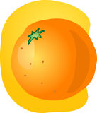 Whole orange illustration Stock Photo