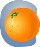Whole orange illustration Stock Photos