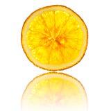 Whole orange slice isolated on white background back lighted Royalty Free Stock Photo