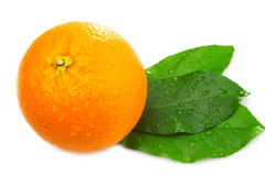 Whole orange with three leaves Royalty Free Stock Photos