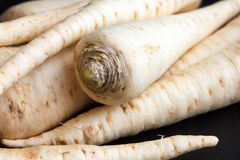 Whole parsnip roots. Stock Image