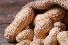 Whole peanuts in the shell in a sack. Macro Royalty Free Stock Photo