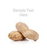 Whole peanuts on white with copy space Royalty Free Stock Photo