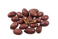 Whole Pecan and open Pecan nuts Stock Photos