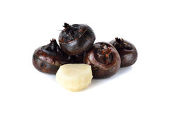 Whole and peeled Chinese water chestnut or water-nut on white Stock Image