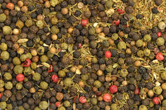 Whole peppercorns background Stock Images