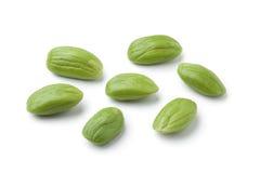 Whole petai beans Stock Image
