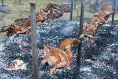Whole pig cooked on a spit grilled Stock Photo
