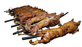 Whole Pig and Lamb Being Roasted - isolated Stock Image