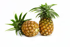 Whole pineapple Royalty Free Stock Photo