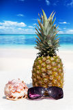 Whole pineapple fruit stands on the beach Royalty Free Stock Image