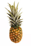 Whole Pineapple Isolated Stock Photos