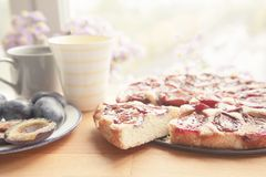 Whole plum cake with tea mugs, fresh plums and flowers on wooden Royalty Free Stock Photography