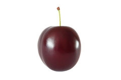 Whole plum isolated. On white background Royalty Free Stock Photography