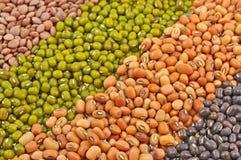Whole pulse seeds Stock Photo