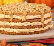 Whole Pumpkin Cake Stock Photography