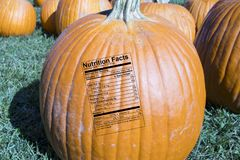 Whole pumpkin with nutrition label in patch at farmers market Stock Image