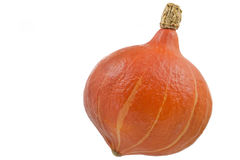 Whole pumpkin on white background Royalty Free Stock Images