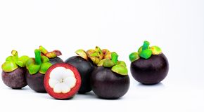 7 whole purple mangosteen and another cross section isolated on white background. Tropical fruit from Thailand. The queen of fruit. S. Asia fresh fruit market stock image