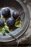 Whole purple prunes with branches and leafs on vintage background Stock Photography
