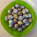 The Whole quail eggs closeup Royalty Free Stock Photo