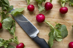 Whole radishes with knife. On cutting board Stock Photography
