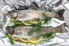 Whole rainbow trout baked in foil (before oven baking). Close up stock image