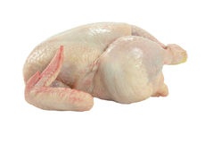 Whole raw chicken Royalty Free Stock Photography
