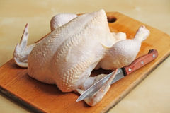 Whole raw chicken on the chopping board. With a knife Royalty Free Stock Images