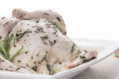 Whole raw chicken with  rosemary ,  Stock Image