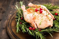 Whole raw chicken on wooden cutting board. raw chicken carcass. With spices Stock Images