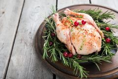 Whole raw chicken on wooden cutting board. raw chicken carcass. With spices Stock Image