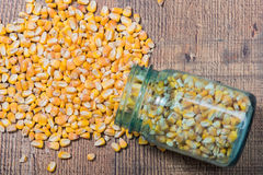 Whole raw corn kernels being dumped from a jar. Stock Images