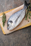 Whole raw fish on cutting board. Cooking food Royalty Free Stock Photography