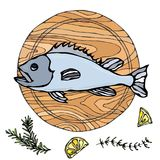 Whole Raw Fish on Round Cutting Board. For Cooking, Holiday Meals, Recipes, Seafood Guide, Menu. Hand Drawn Illustration. Savoyar. Doodle Style Royalty Free Stock Image