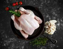 Whole raw Free range chicken in rustic skillet with rosemary leaf and garlic. ready to cook.  Royalty Free Stock Photography