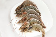 Whole raw prawns Royalty Free Stock Photo