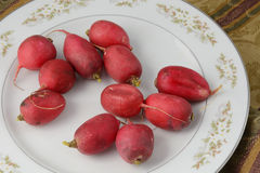 Whole raw radishes on white plate. On tablecloth Royalty Free Stock Photo