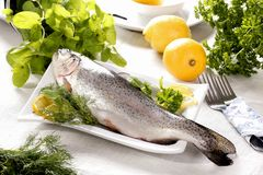Whole raw trout Stock Photo