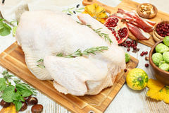 Whole raw  turkey Royalty Free Stock Photos