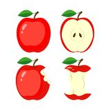 Whole red apple, half apple slice, bitten apple, stub. vector il. Lustration isolated on white background Royalty Free Stock Images