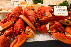 Whole red lobsters on ice Royalty Free Stock Photography