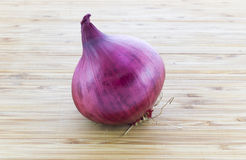 A whole red onion Stock Photos