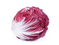 Free Whole Red Radicchio Or Red Salad Isolated On White Stock Images - 125233654