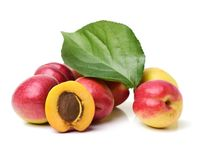 Whole ripe apricot and half of apricot Royalty Free Stock Images
