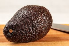 Whole ripe dark brown avocado bilse variety on wooden cutting board, blurred knife in background stock photo