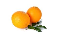 Whole ripe orange on white Stock Images