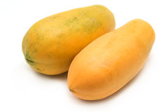 Whole ripe papaya fruit Stock Photography