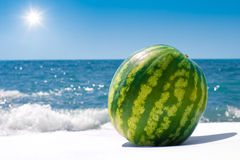 Whole ripe watermelon near sea in sunny day Stock Photography