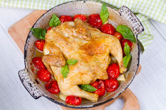 Whole roast chicken with tomatoes cherry, green basil and garlic. Royalty Free Stock Photo